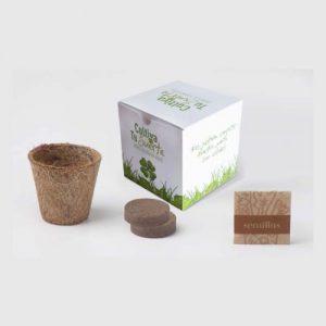Kit de siembra caja diseño
